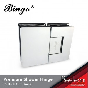 Bathroom Glass Shower Cubicle Premium Shower Hinge screws concealed PSH-803 - Glass to Glass (180°) | BINGO®