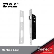 Swing Door Mortise Lock Stainless Steel   DAL